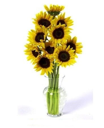 get your mothers day flowers with this online delivery service with 15 off at amazon flowers sunflowers 1